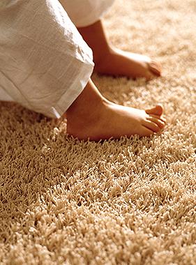 Tecnolimpmdp limpieza de alfombras mar del plata - Limpieza de alfombras en casa ...